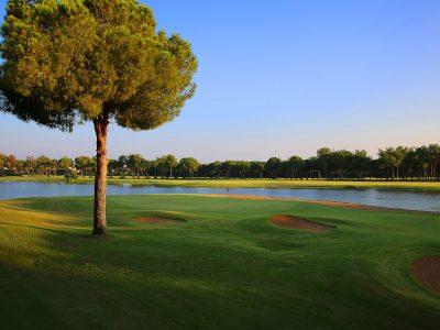 GloriaOldCourse14th-9_GolfClub_H