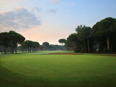 GloriaOldCourse20_GolfClub_H